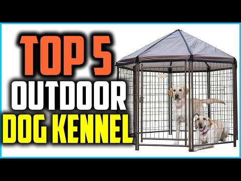 Top 5 Best Outdoor Dog Kennel In 2020