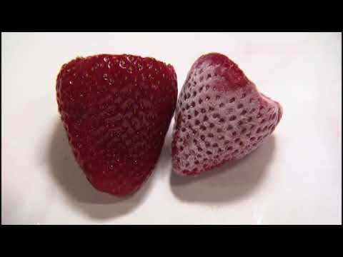 Вопрос: Как приготовить закуску из замороженных фруктов?