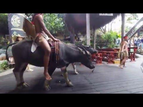 Amazing Hainan Travel Experience
