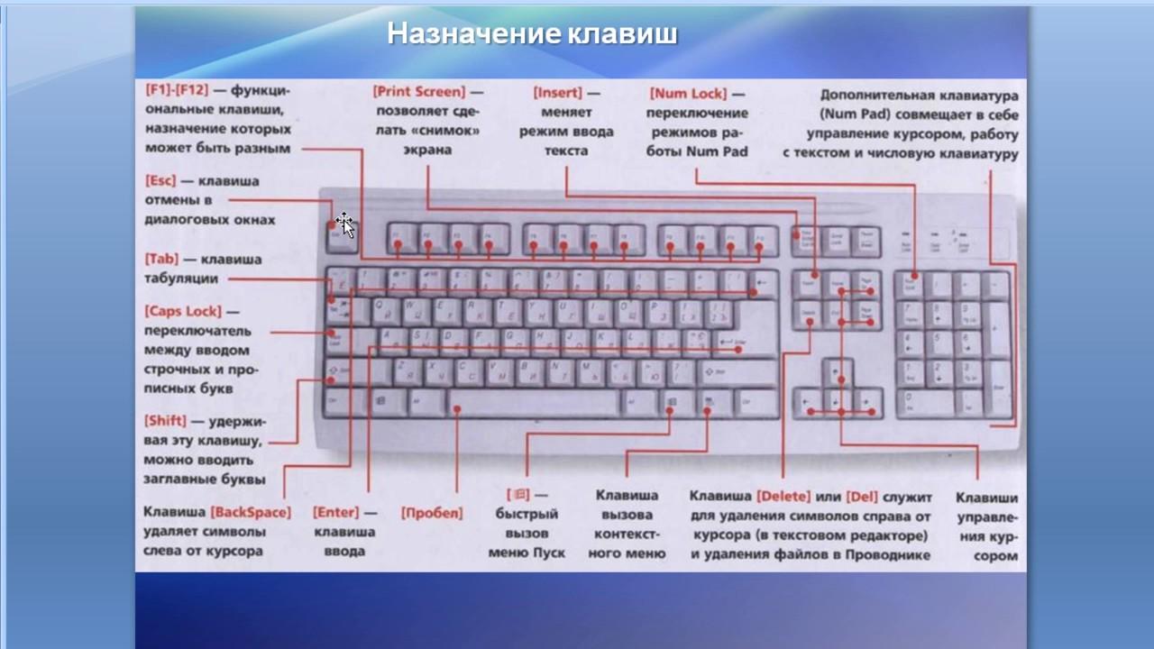 дачный клавиатура описание всех клавиш ролях: