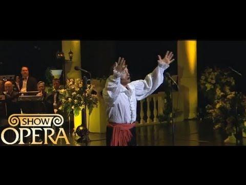 Трек Д. Россини - ария Фигаро из оперы
