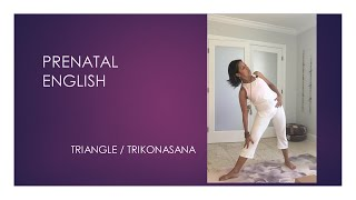 What are basic exercises for prenatal yoga?  - English Series - video 5