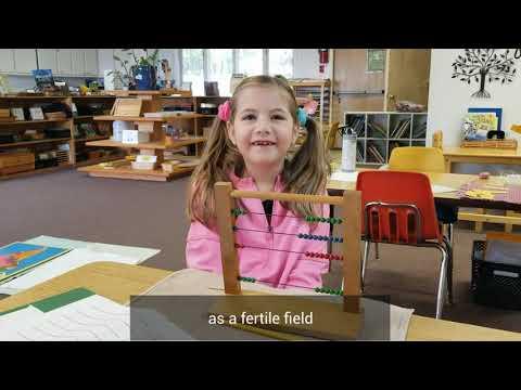 Montessori School of Anderson celebrates Montessori's 150th Birthday