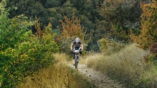 male rider cyclist riding down a hill on a forest trail