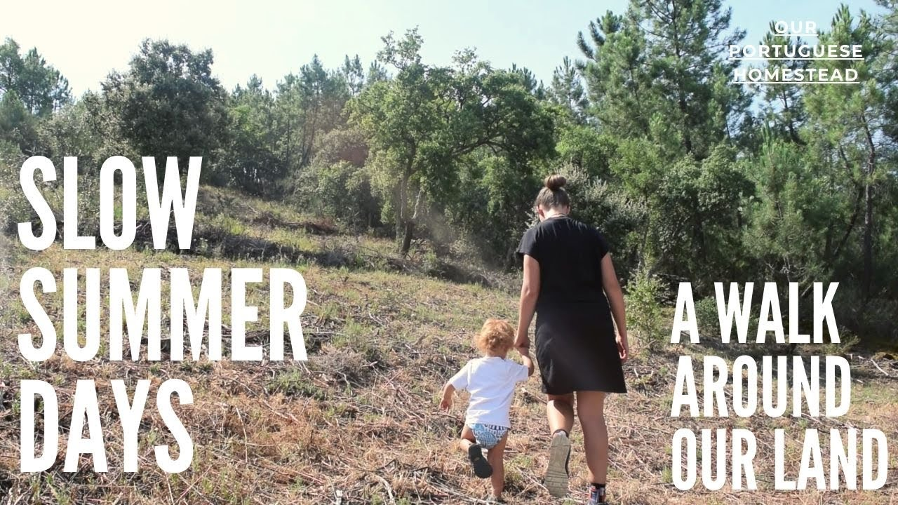 Those slow days of summer -A walk around our land and taking time to rest - Our Portuguese Homestead