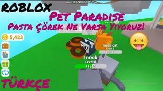 🐼 My Baby Animals Eating Doughnuts! 🐼 | Roblox Pet Paradise | Roblox English