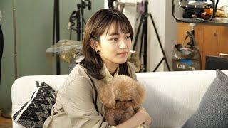 YouTube動画:川口春奈、犬と戯れる姿が可愛い!マカロニえんぴつ新曲「たしかなことは」起用 「CREO(クレオ)」新TVCM『やさしいレンズでいきますか?』篇