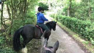 Horse Riding in Yorkshire : The Gate Ride : Part 1 : Can we get past the pigs!!