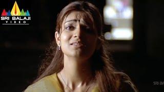 Neninthe Movie Siya Love Proposal to Raviteja Scene | Ravi Teja, Siya | Sri Balaji Video