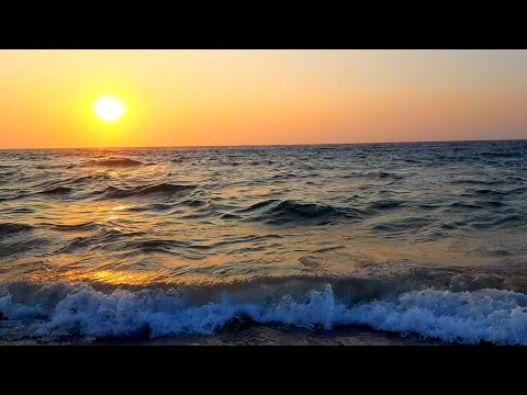 galle-face-green-colombo,-sri-lanka-in-4k-ultra-hd-(phone-video)