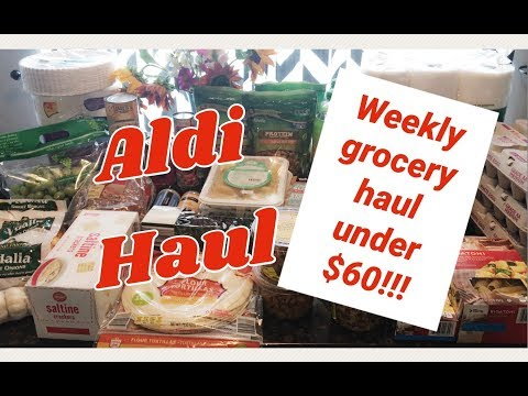 Weekly Grocery Haul | Under $60 for family of 4!! Vegan / Vegetarian