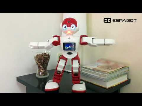 video robot bobi IA