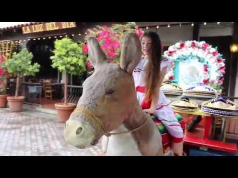 Mi Burrito Sabanero - Feliz Navidad - Official Video - Melody Kidder