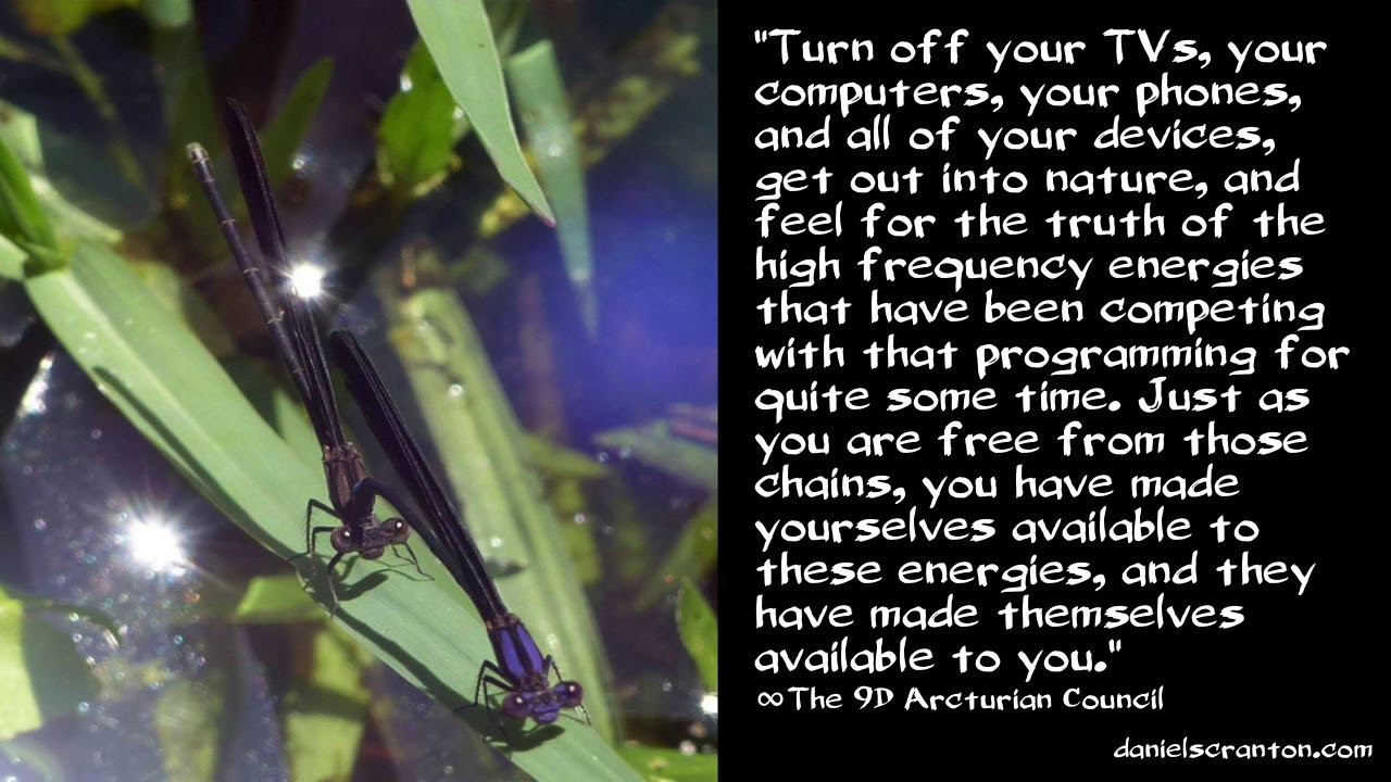 Breaking Free from Programming ∞The 9D Arcturian Council, Channeled by  Daniel Scranton