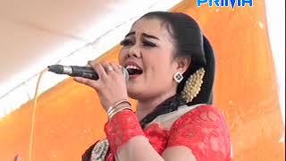 Download Video Terbaru..!! NGLABUR LANGIT cover mbak YANTI campursari PRIMA WIJAYA Jombang MP3 3GP MP4