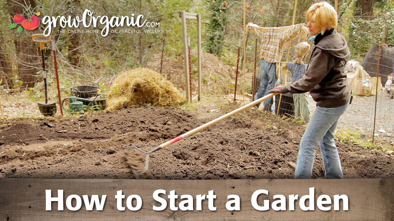 How to Start a Garden - YouTube