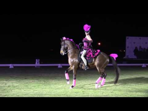Dressage Heats Up with Fishnet's in a Freestyle!