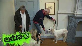 Realer Irrsinn: Kunstausstellung für Hunde