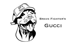 Brave Fighter's Gucci Американский питбуль терьер