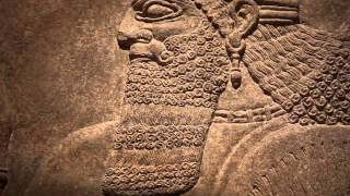 Assyrian Relief from the Palace of Ashurnasirpal II
