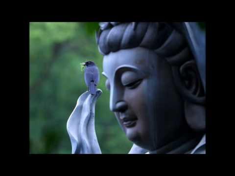 Love Peace and Harmony