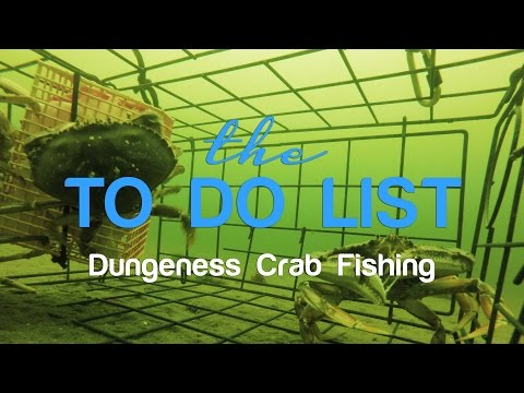 The TDL - Dungeness Crab Fishing