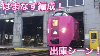 【はまなす編成】キハ261系はまなす編成が苗穂運転所を出庫!中が見えました!