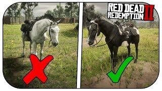 rdr2 black arabian horse - Clip Ready