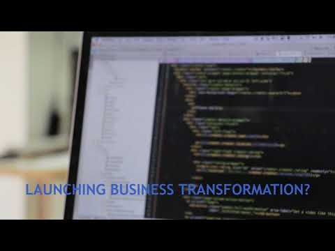 REV Partners - Business Transformation - Consulting, Interim