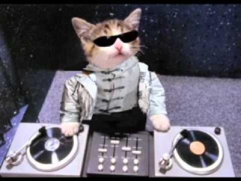 FUNK DANCE -  Chris Thomas - Celebrity funk ( instrumental remix )        DANDI  DJ       HQ.avi