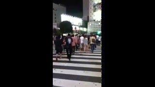 東京 Tokyo highlights Shibuya's crossing  渋谷区