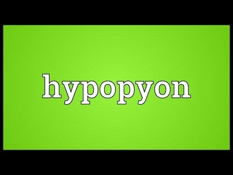 Header of hypopyon