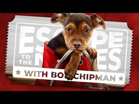 A DOG'S WAY HOME (Escape to the Movies)
