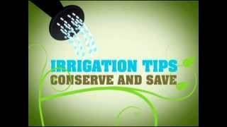 Irrigation Tips: Conserve and Save