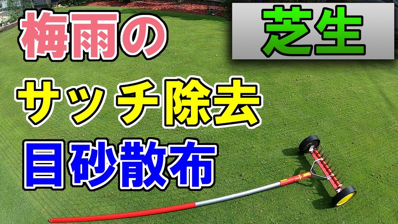 【芝生】梅雨のサッチ除去&目砂散布【病害予防】
