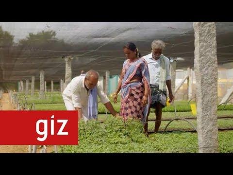 Green Innovation Centre India | GIZ