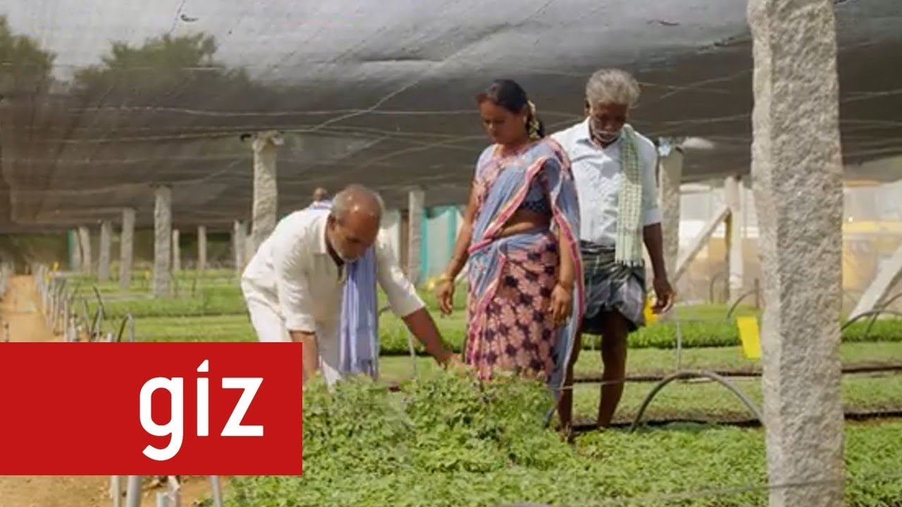 Green Innovation Centres for the Agriculture and Food Sector – India