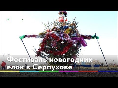 В Серпухове провели фестиваль новогодних елок