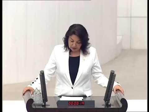 Julide İskenderoğlu Meclis Konuşması