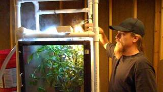 Jacksons Chameleon Video(This is a video I did in response to chameleonforums keepers having questions regarding raising baby Jacksons chameleons., 2011-10-11T04:49:29.000Z)