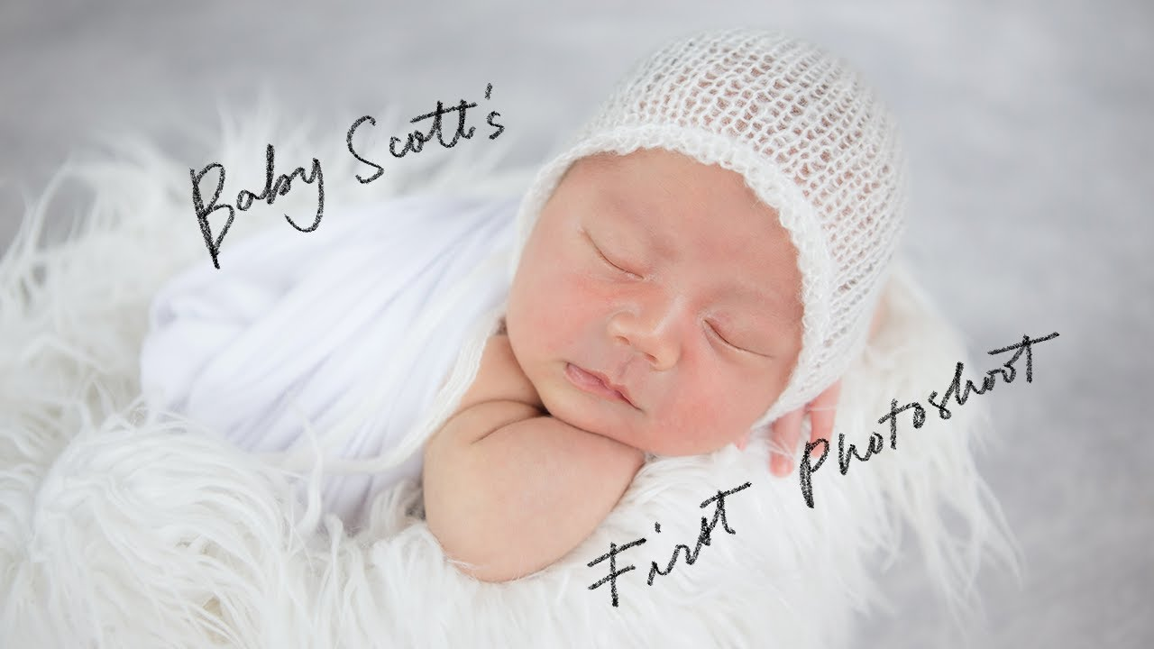 Baby Scottie
