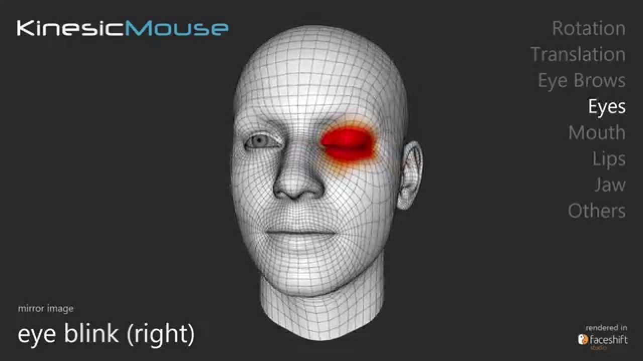 KinesicMouse: A head and face controlled camera mouse