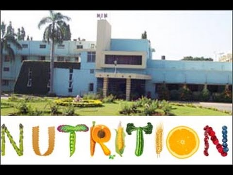 Career Guidance - National Institute of Nutrition - Under Graduate, Graduate, P.G, Research Courses.