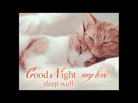 Goodnight My Love by Barry and The Tamerlanes