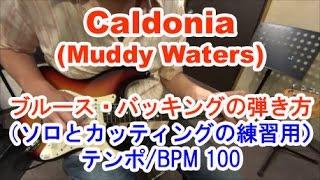 ギター初心者講座!Caldonia(Muddy Waters)/ブルースのバッキング/ソロとカッティング練習用 テンポ100