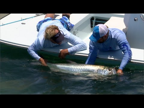 Fly Fishing for Tarpon in Key West and Marquesas Islands