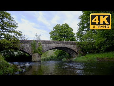 Beautiful River Screensaver for 4K TV and PC screens
