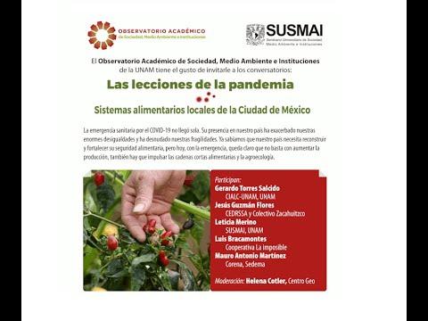 Conversatorio: Las lecciones de la pandemia. Sistemas alimentarios locales de la Ciudad de México [315]