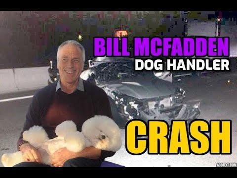 Star dog handler Bill McFadden injured in car crash on way to ...