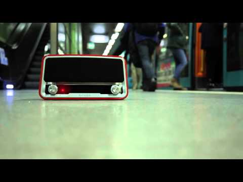 Das rote Radio | Folge 1 | koalas